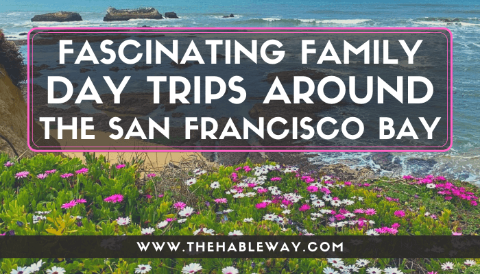 Fascinating Family Day Trips Around SF Bay Area, CA